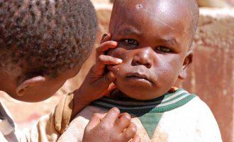 Vers la fin d'un service public international? La transition humanitaire en Afrique de l'Ouest